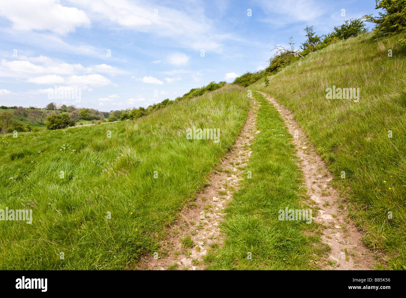 A public footpath going uphill in the Lasborough valley in the Gloucestershire Cotswolds - Stock Image