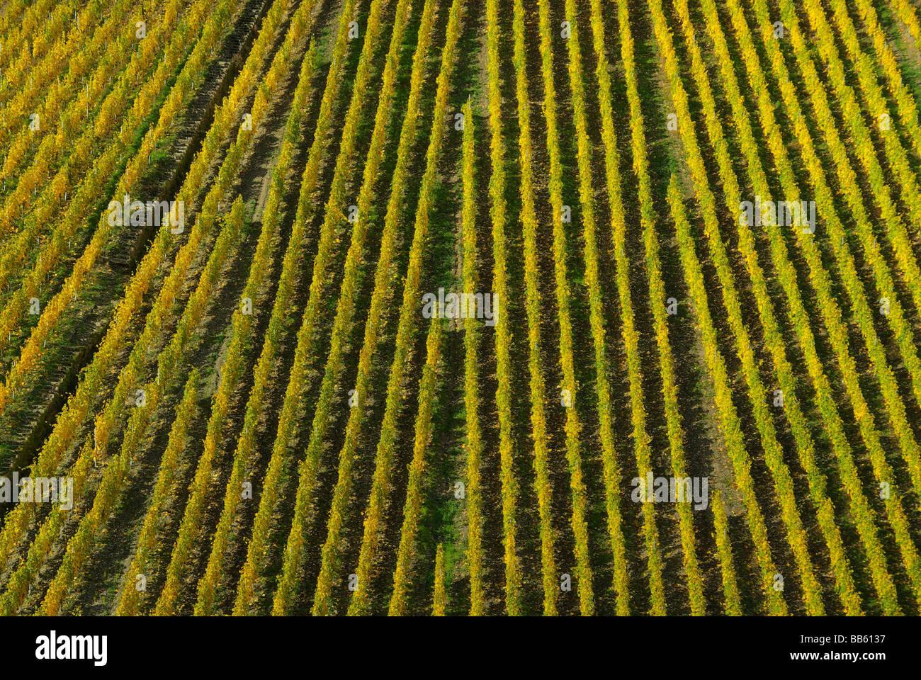 Fürstenberg Fuerstenberg 04 Stock Photo