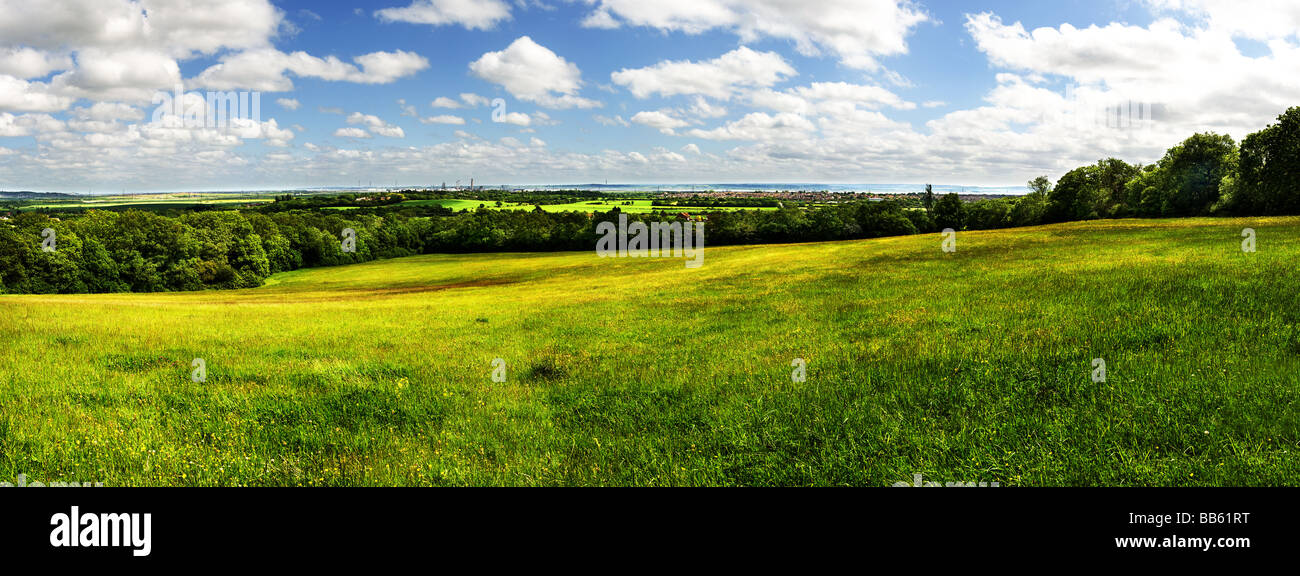 A panoramic view of a field pasture meadow in Langdon Hills Country Park Essex. - Stock Image