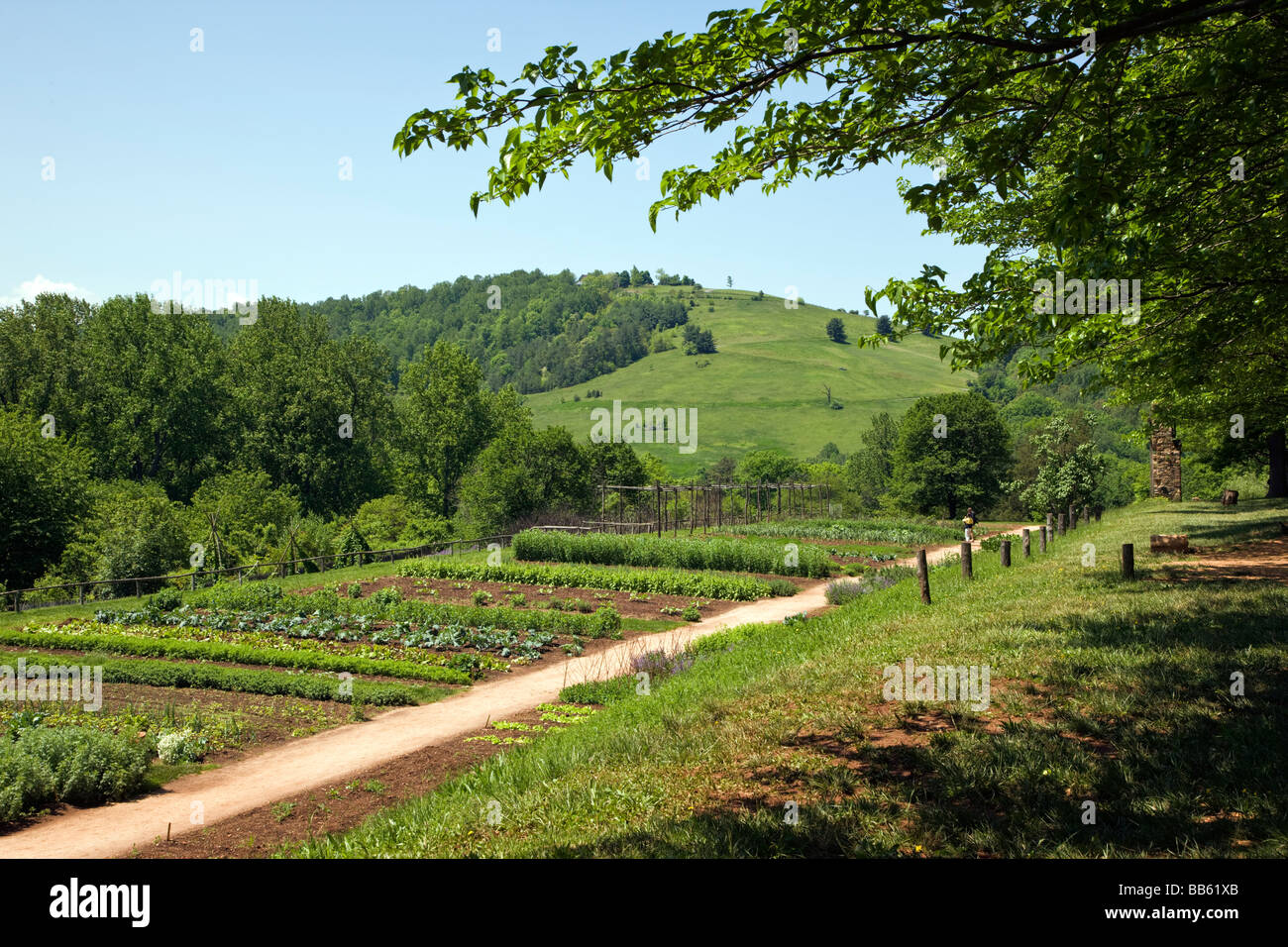 The Vegetable And Flower Gardens At Monticello Thomas Jefferson S Former  Home And Plantation Near Charlottesville