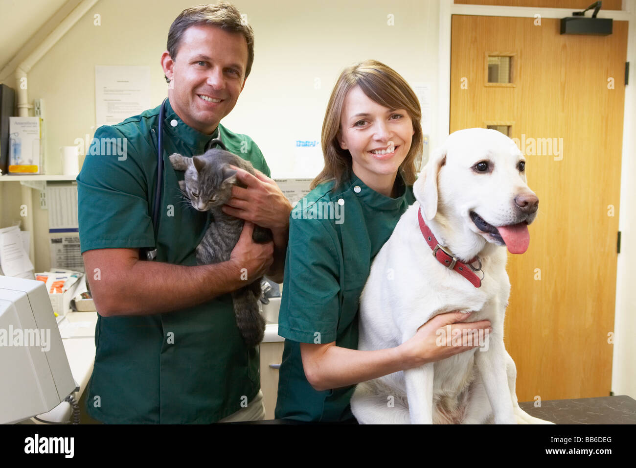 Vetinary Staff With Dog And Cat In Surgery - Stock Image
