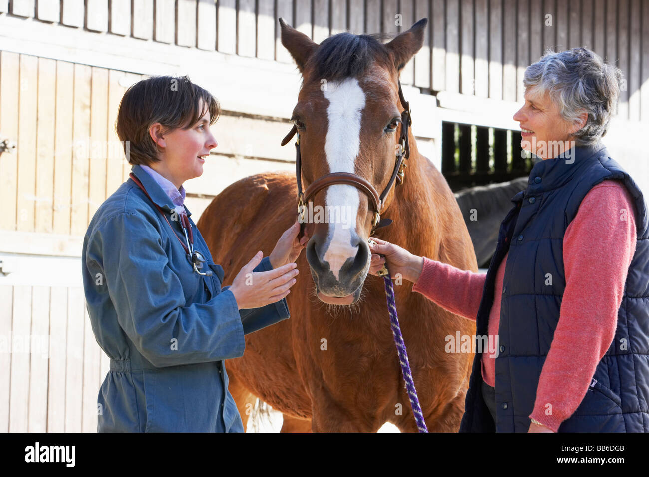 Vet In Discussion With Horse Owner Stock Photo