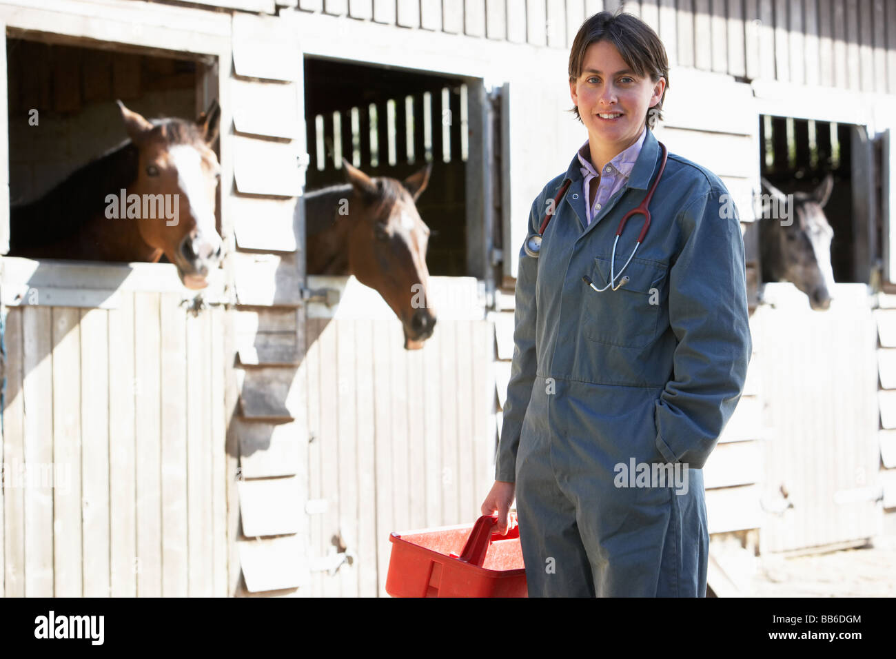 Portrait Of Vet Standing By Horse Stables - Stock Image