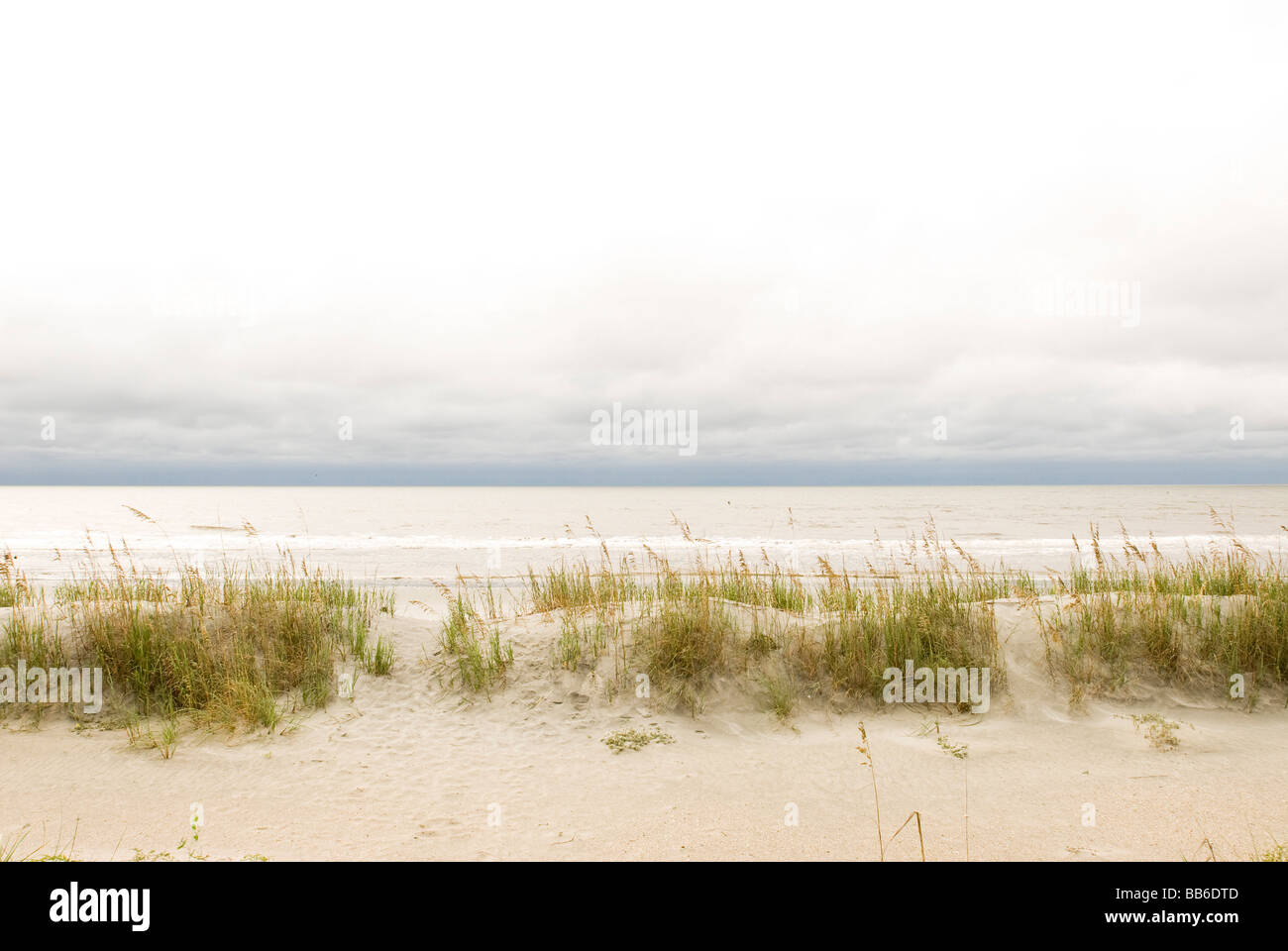 beach dunes in south carolina - Stock Image