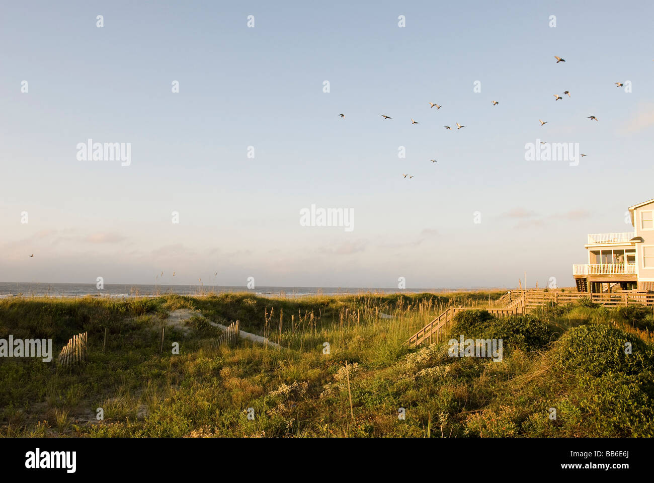 beach dunes and ocean - Stock Image