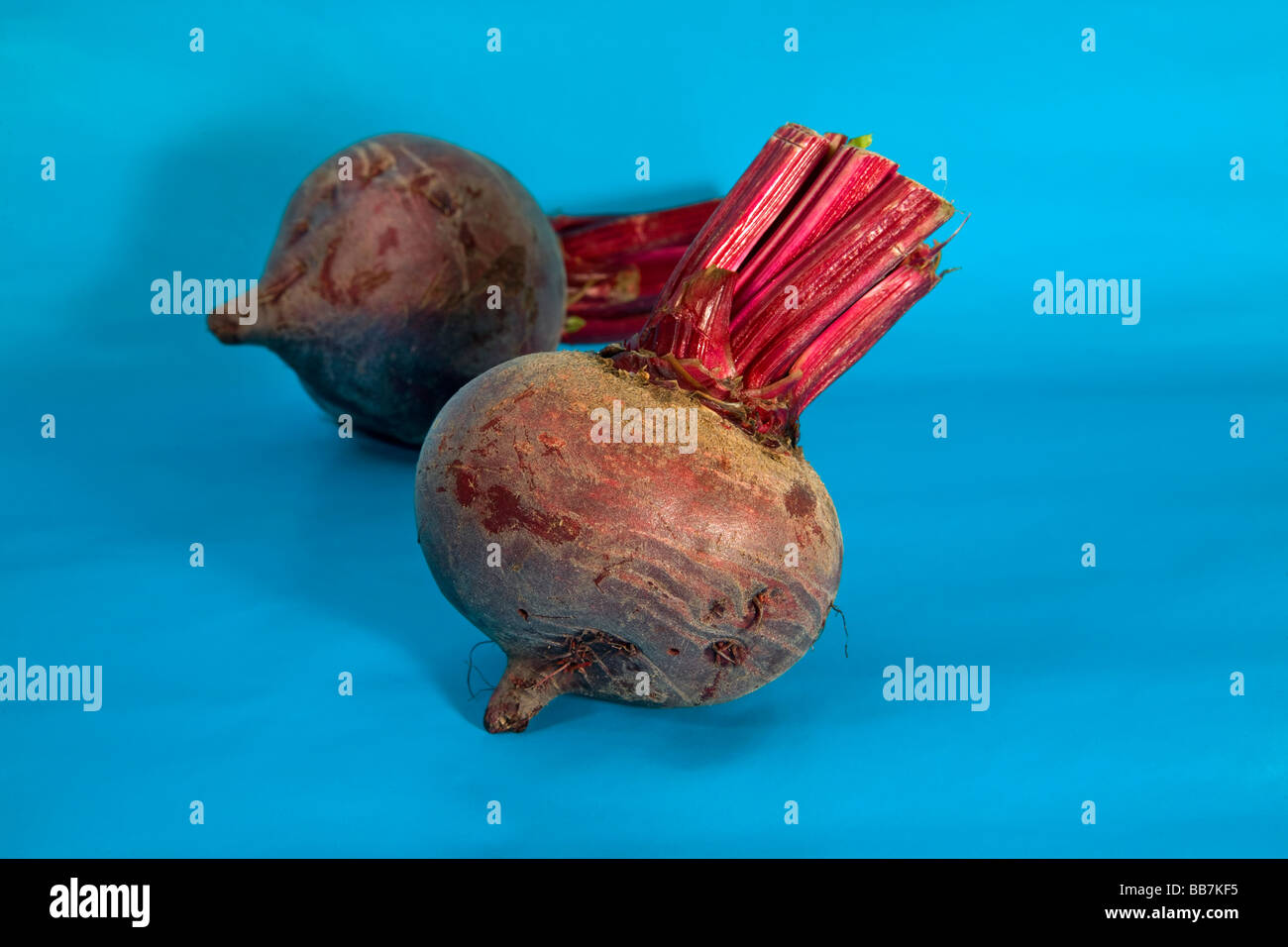 Red sugar beets with their tops clipped - Stock Image