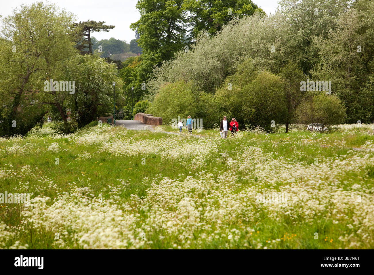 England Berkshire Cookham Moor path through public open space - Stock Image