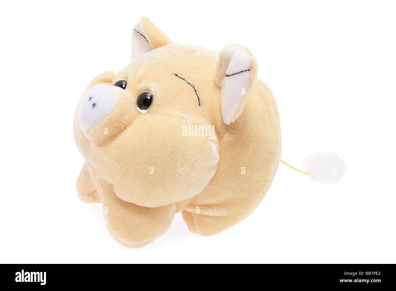 Soft Toy Pig - Stock Image