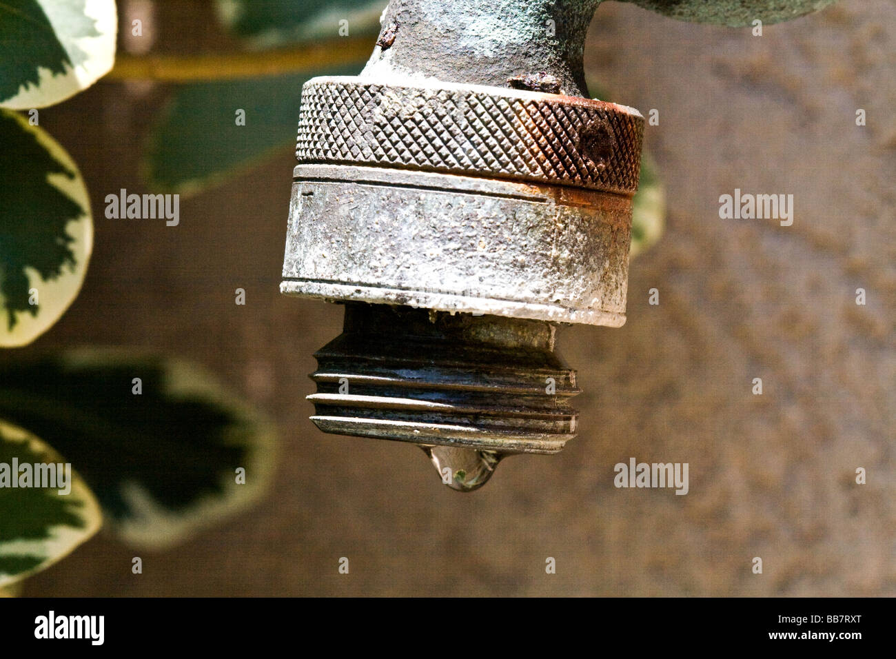 Single drop of water coming out of a metal outdoor spigot - Stock Image