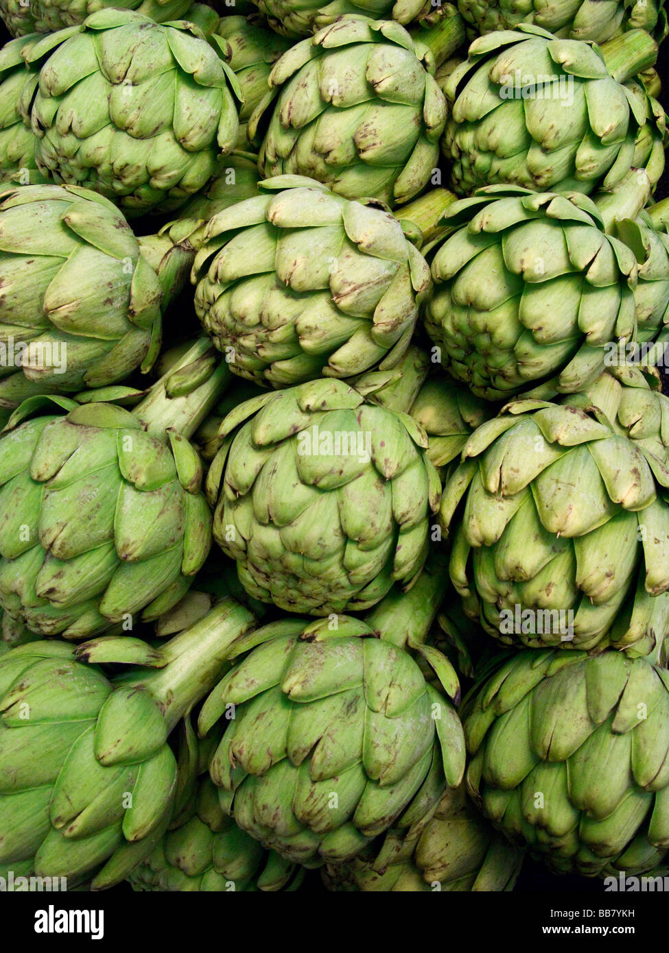 Ripe Artichokes on display in food market Seattle WA USA Stock Photo