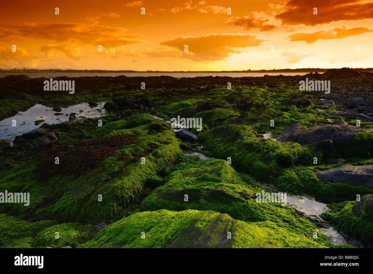 Evening Harmony on the coastline of Rush, Co. Dublin, Ireland - Stock Image