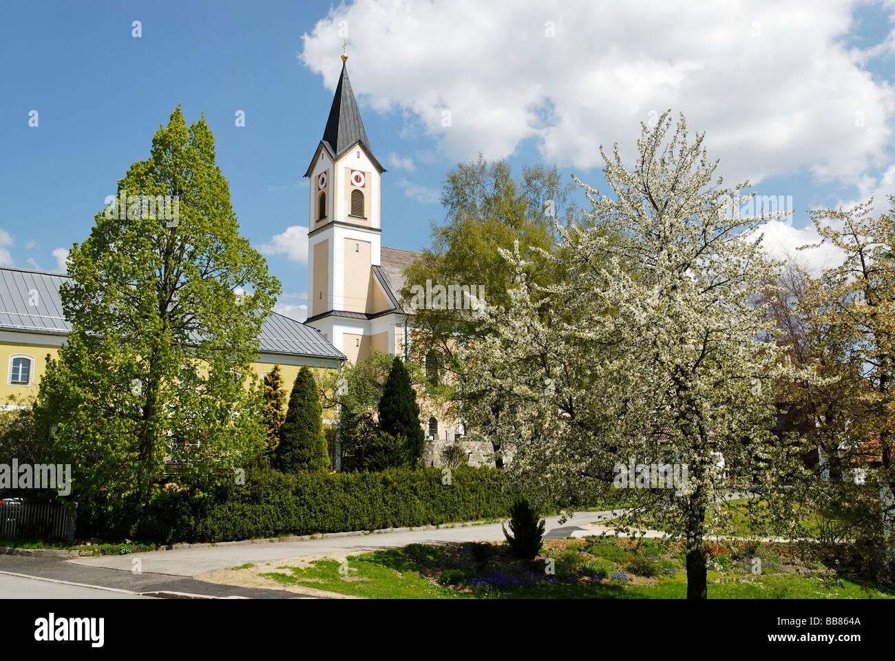 Parish church St Raymund, Breitenberg, Bavarian Forest, Lower Bavaria, Germany, Europe Stock Photo