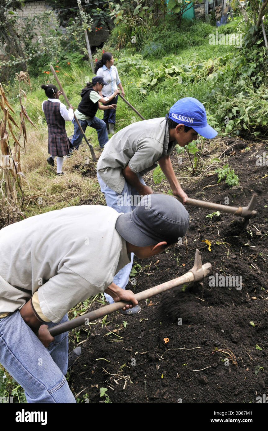 Teenagers from the slums of Cerro Norte being trained in horticulture as part of an urban agricultural project, - Stock Image