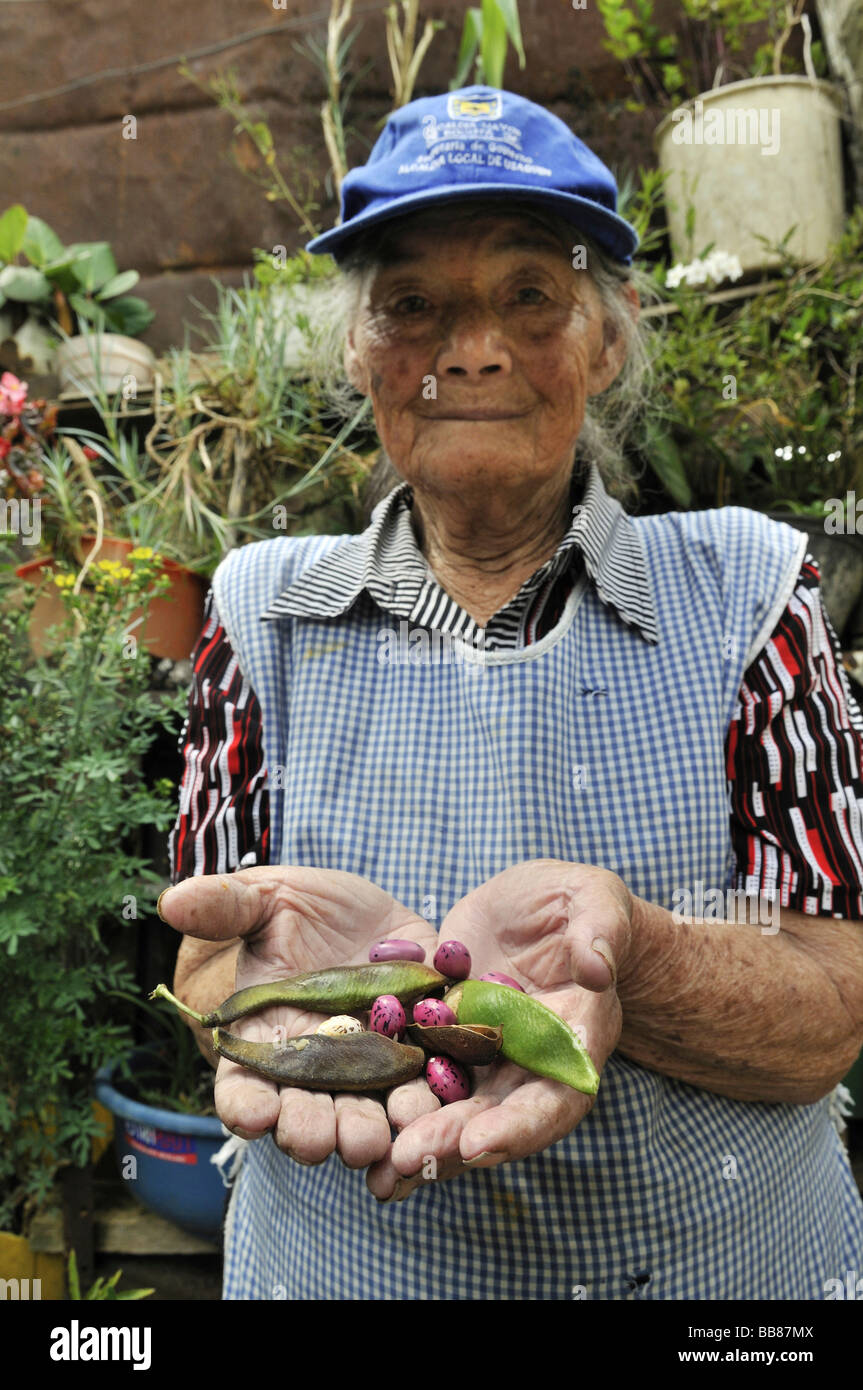 Elderly woman holding beans that she has planted behind her house, slums of Cerro Norte, Bogotá, Columbia - Stock Image
