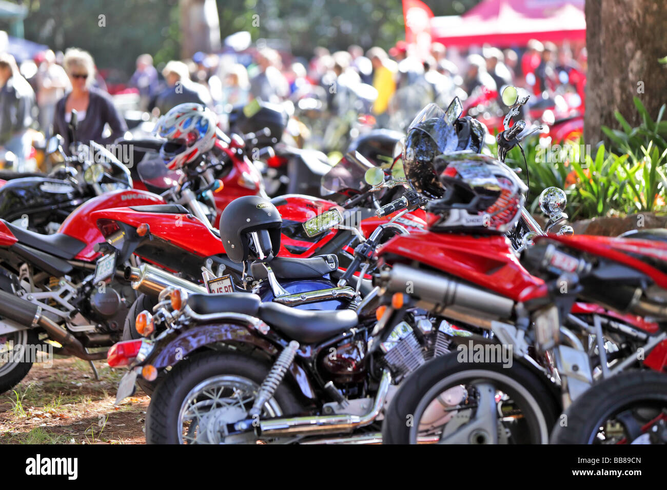Ducati motorcycle club meets to display their bikes - Stock Image