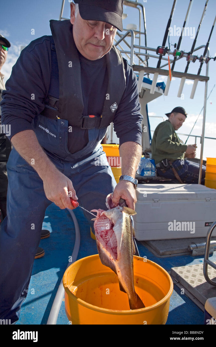 Man On Fishing Boat Cleaning Stock Photos Amp Man On Fishing