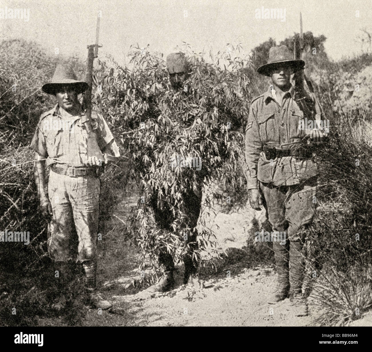 Gallipoli campaign.  A Turkish sniper disguised as a bush in custody after being captured by Anzac troops. - Stock Image