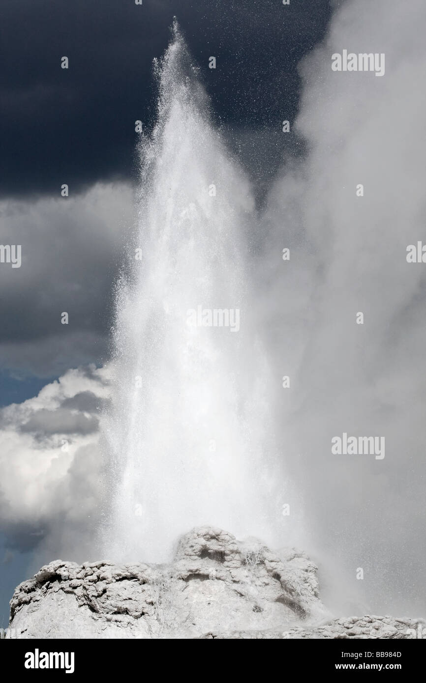 Castle geyser erupting - Stock Image