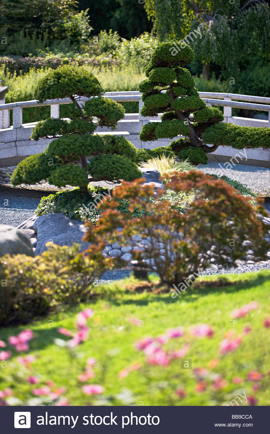 japanese dry garden stock photos japanese dry garden stock images alamy. Black Bedroom Furniture Sets. Home Design Ideas