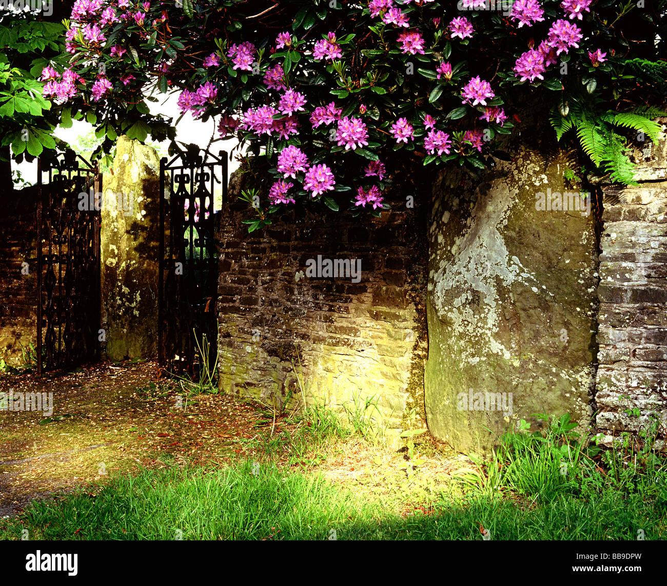Ysbyty Cynfyn Stone Circle St John the Baptist Church Ysbyty Cynfyn Church Nr Devils Bridge Ceredigion Wales Stock Photo