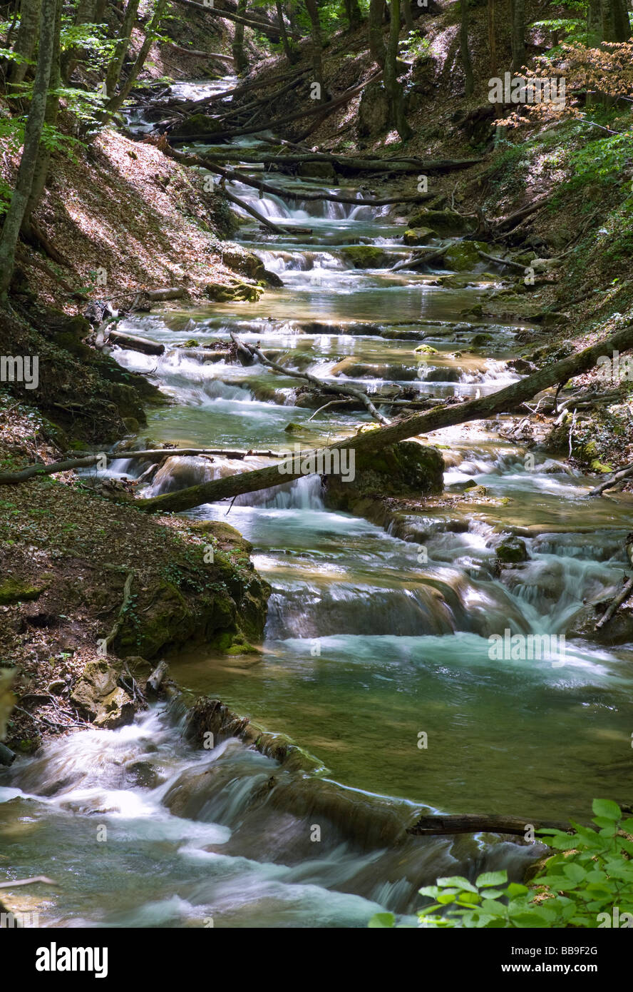 Ripples and cascades on spring mountain river in dark forest. Long term exposure. - Stock Image