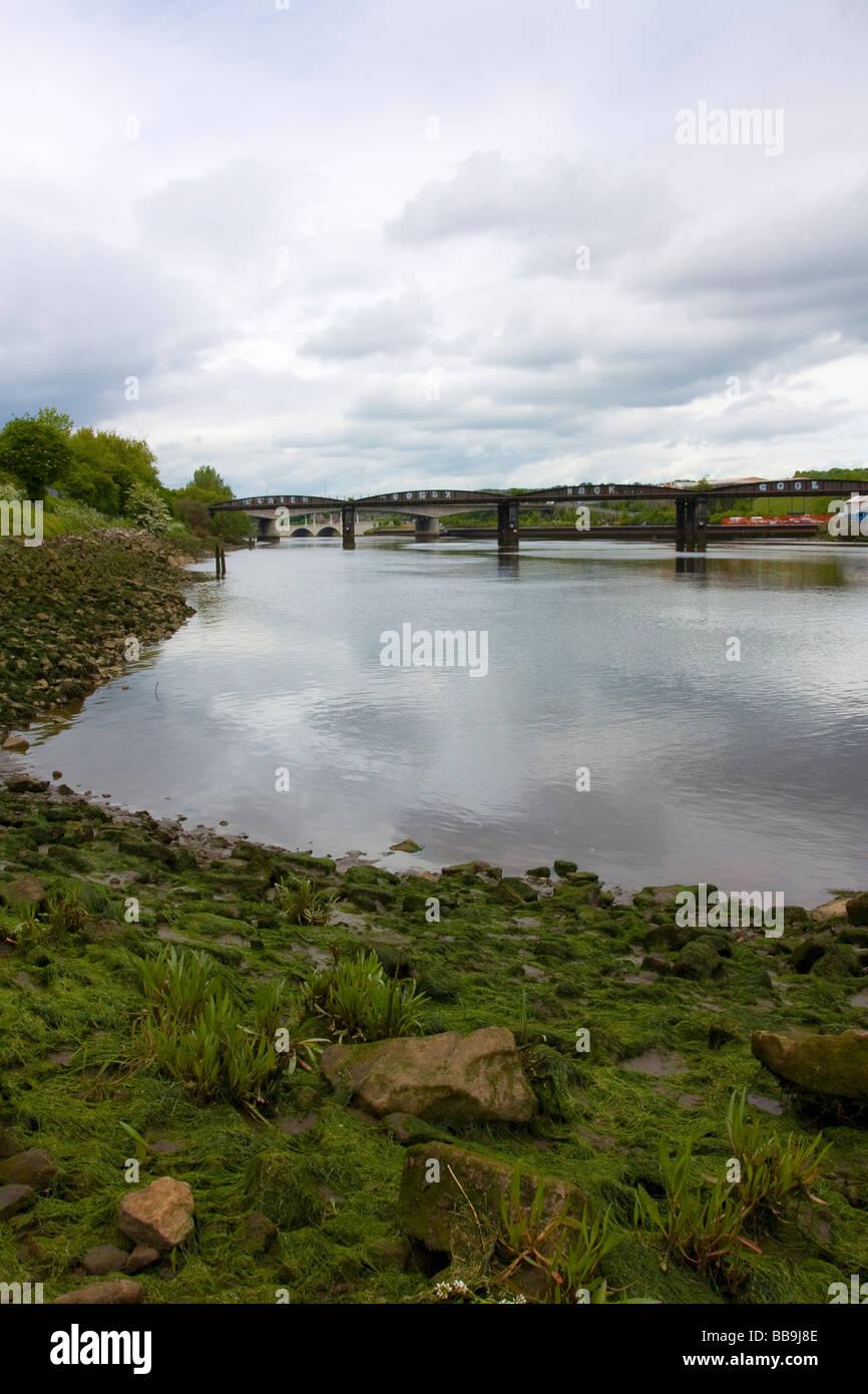 River Tyne next to scotswood bridge looking towards old disused railway bridge, Newcastle - Stock Image