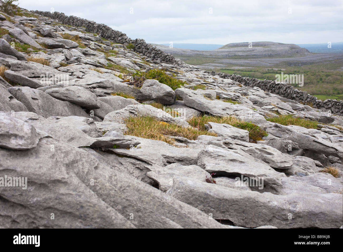 Limestone pavements dry stone walls of Fahee North looking to Turloughmore Burren County Clare Ireland Eire Irish - Stock Image
