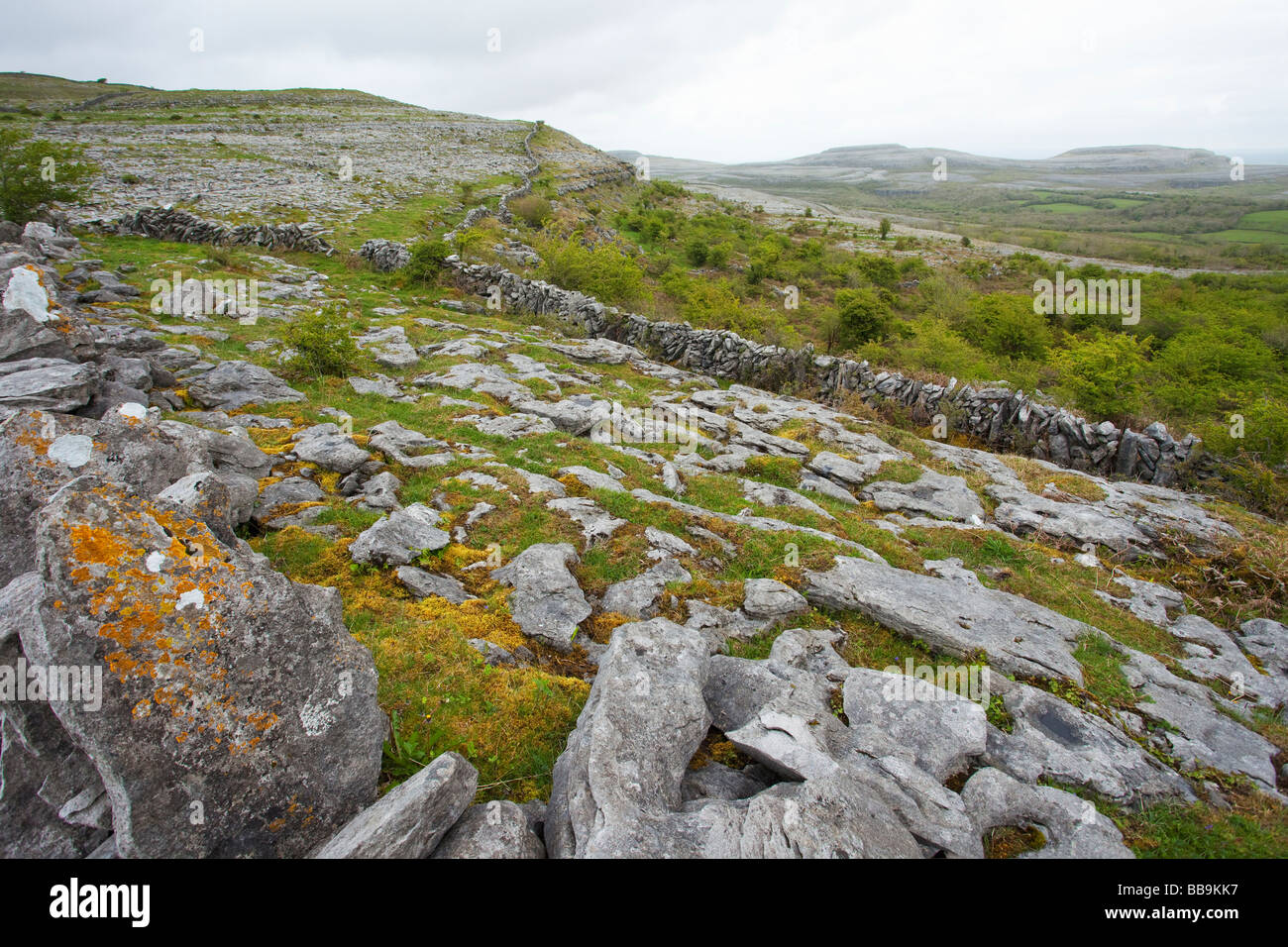 Limestone pavements and stone walls of Fahee North looking Turloughmore Burren County Clare Ireland Eire Irish Republic - Stock Image