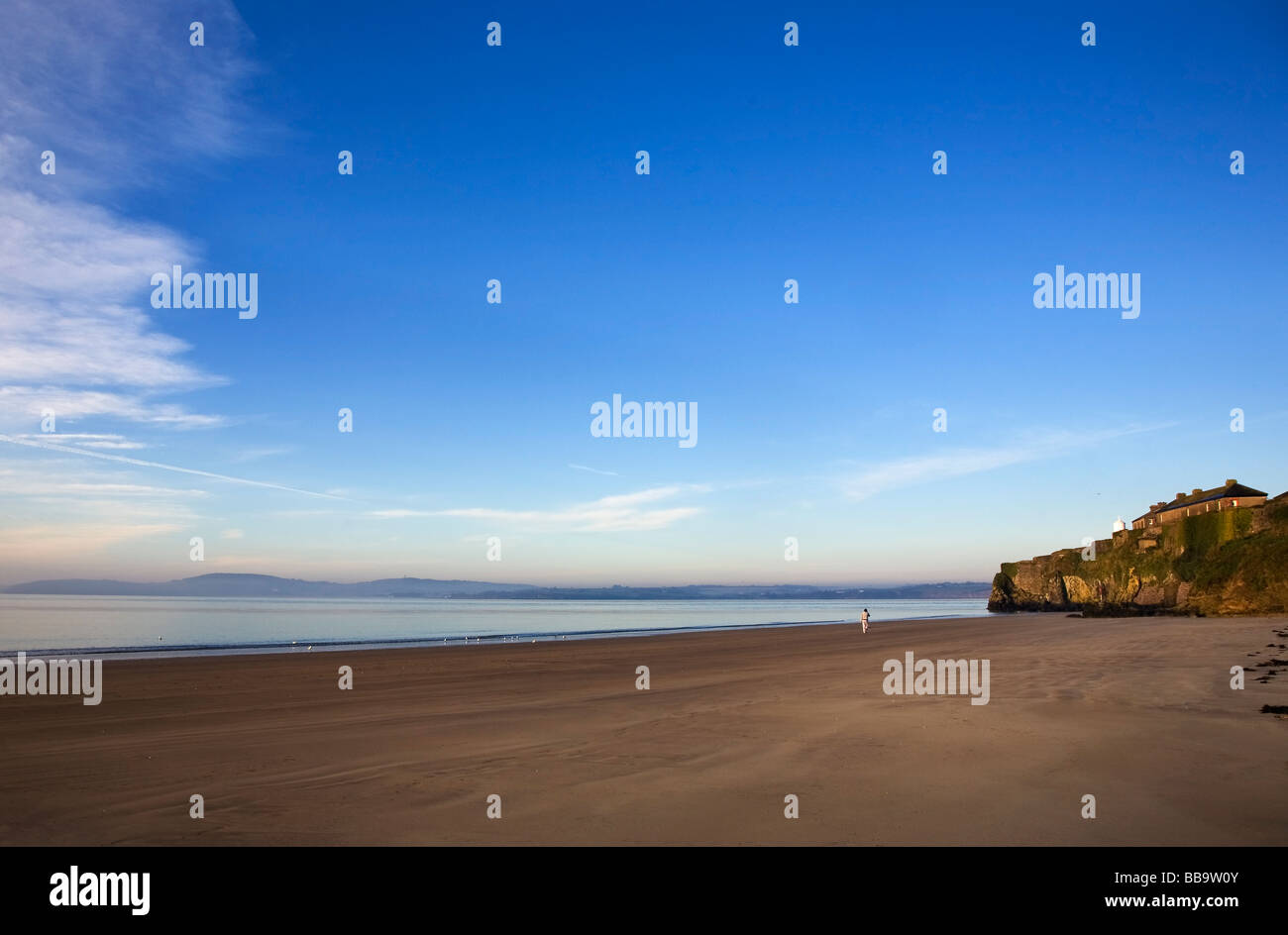 Early morning walker on Arthurstown Beach, Overlooking Waterford Harbour, Co Wexford, Ireland - Stock Image