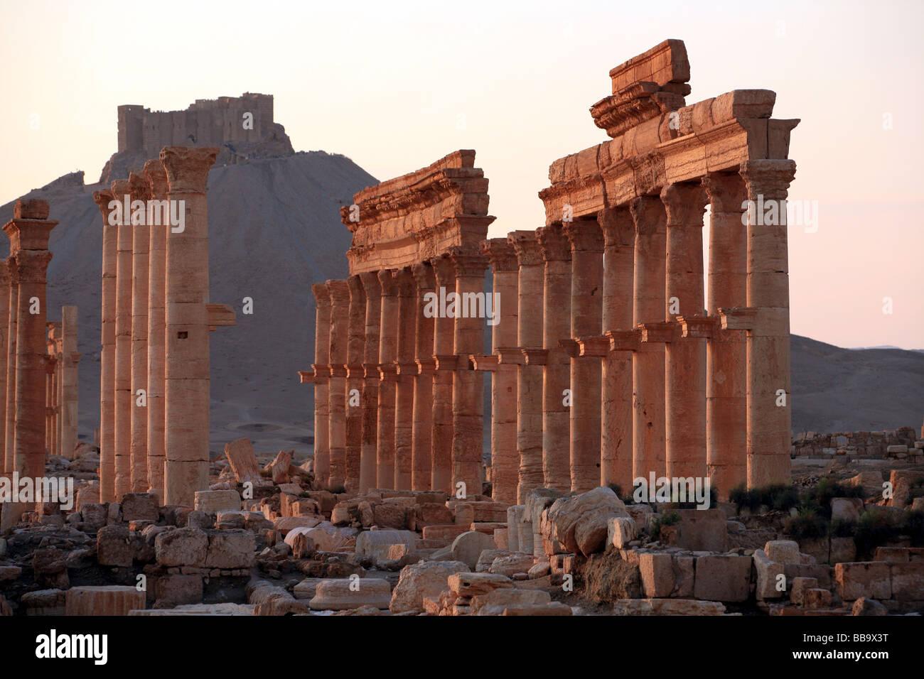 Colonnaded street Palmyra Syria - Stock Image