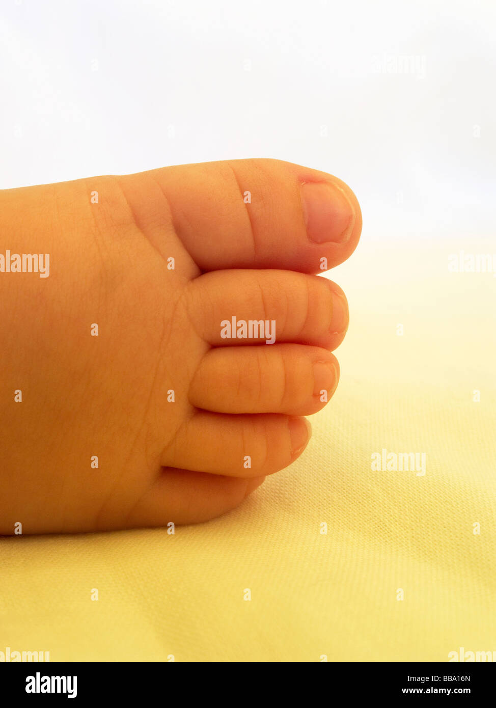 Three month old baby boy's foot - Stock Image