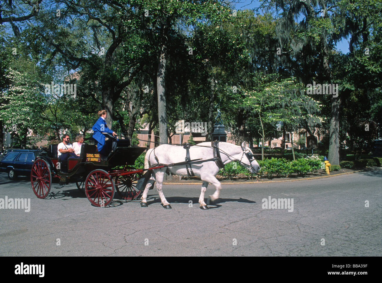 People Taking Horse Carriage Tour In Madison Square In Historic
