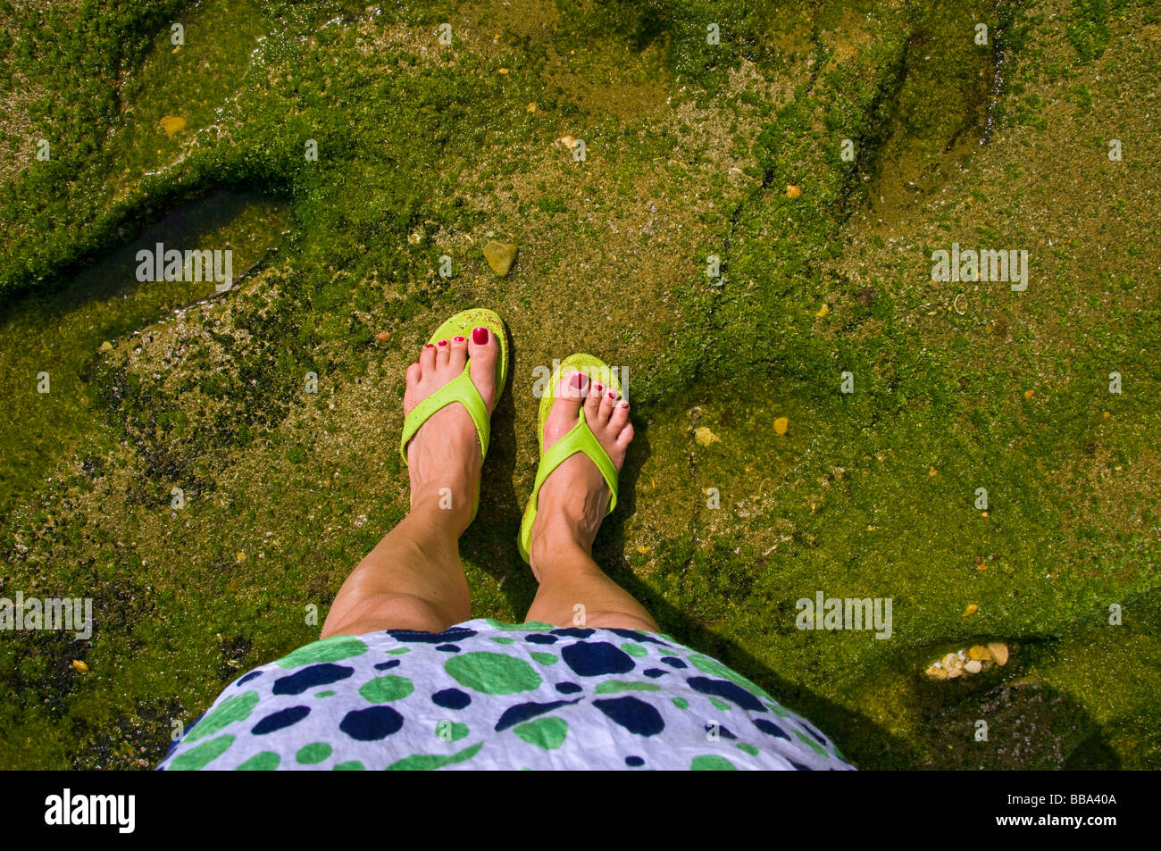 Vacations - Stock Image