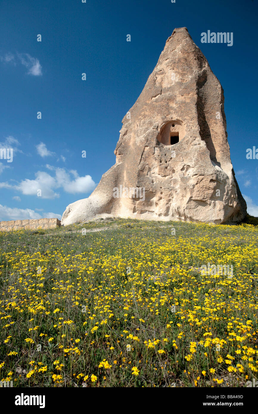 Scenery of Capadoccia in Turkey with cave houses and flowers - Stock Image