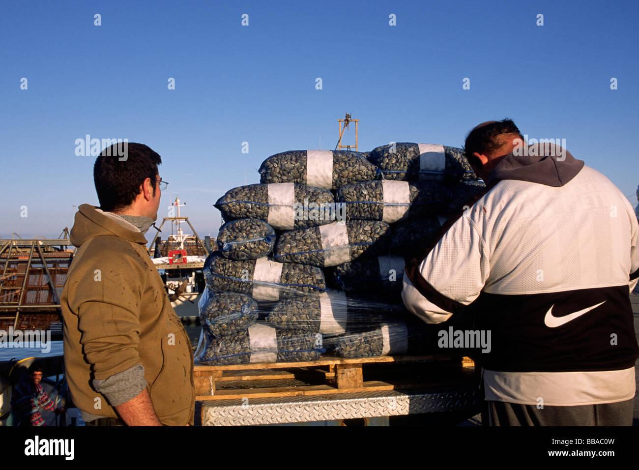 italy, le marche, san benedetto del tronto, fishermen Stock Photo