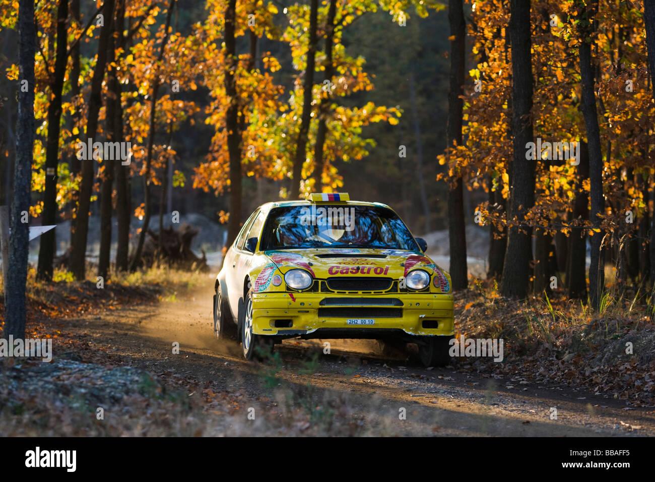 Toyota Corolla WRC, Lausitz Rally, motorsports, Saxony, Germany, Europe - Stock Image