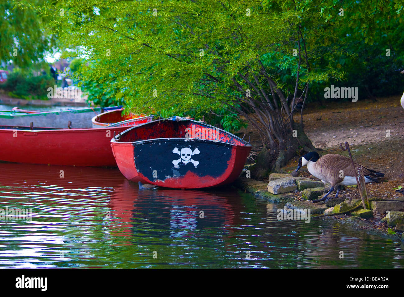 Rowing boat in Finsbury Park boating Lake.Sporting a smiley Jolly Roger design on its stern. - Stock Image