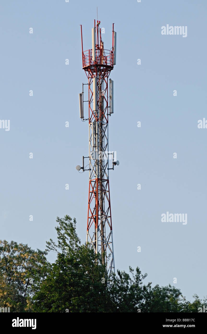 Communication Mast Above Trees - Stock Image