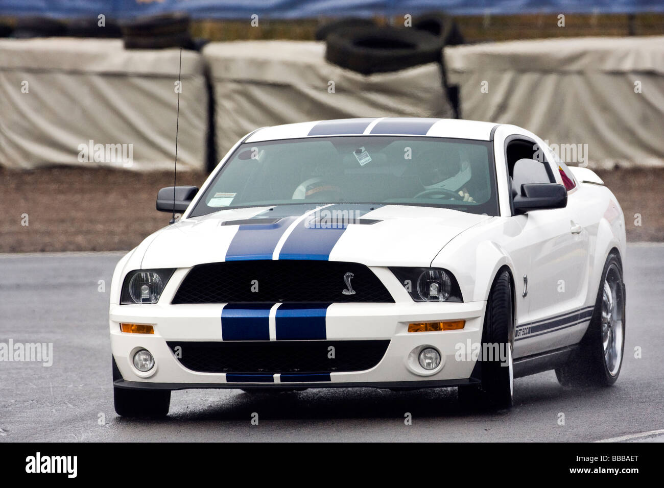 ford mustang shelby gt 500 stock photos ford mustang. Black Bedroom Furniture Sets. Home Design Ideas