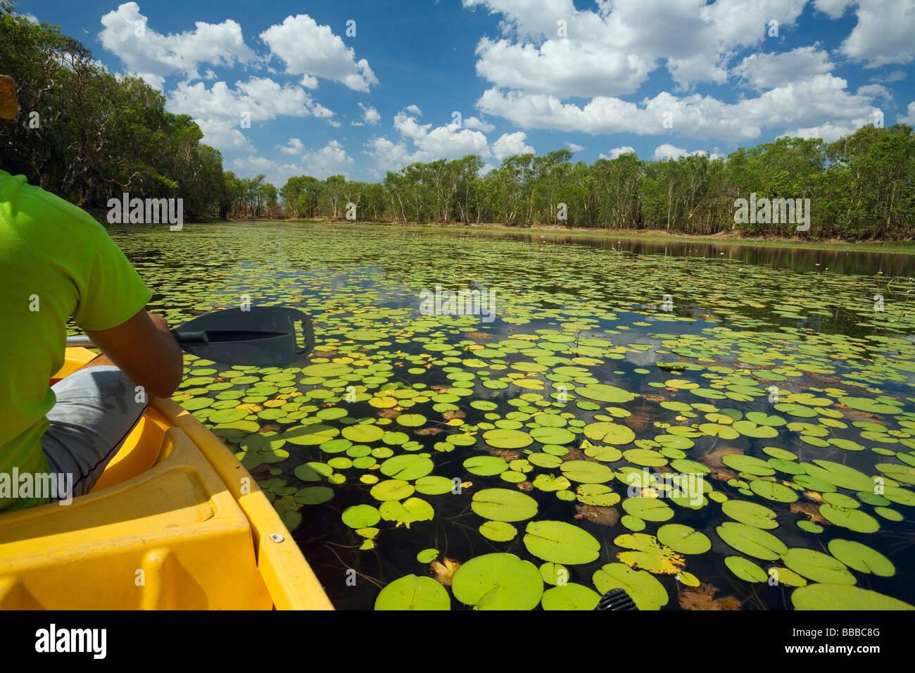 Canoeing on Annaburroo Billabong, Kakadu National Park, Northern Territory, AUSTRALIA - Stock Image
