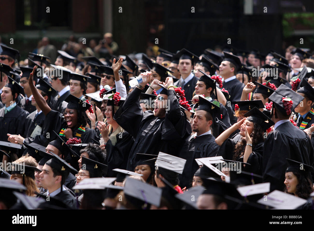 Yale University graduates cheer as they receive their degrees at Yale Commencement Ceremonies - Stock Image