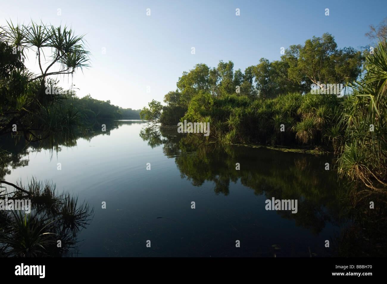Home Billabong in the Yellow Water Wetlands.  Cooinda, Kakadu National Park, Northern Territory, AUSTRALIA - Stock Image