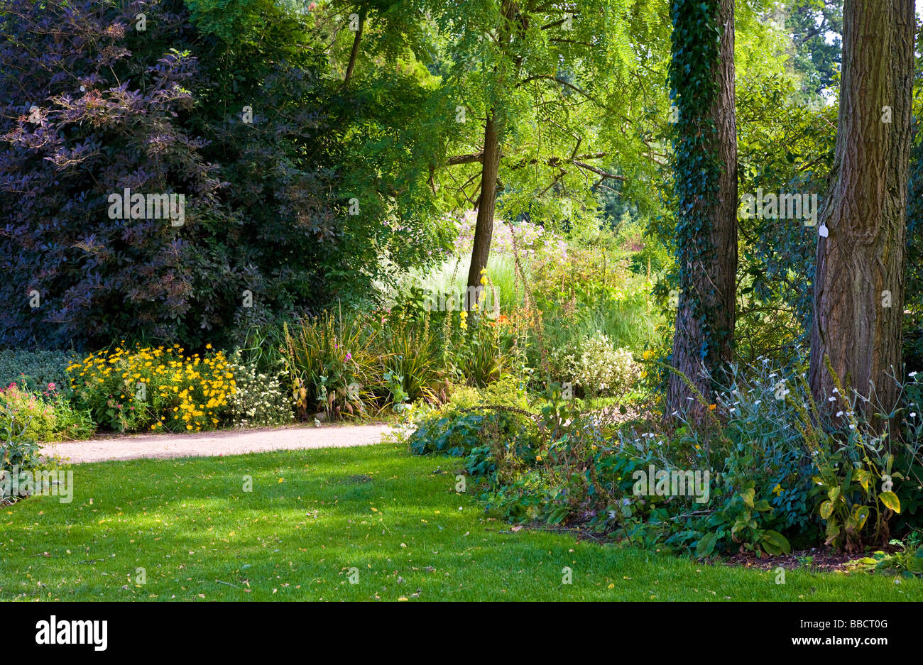 Large trees shrubs bushes and flower borders at Waterperry Garden Oxfordshire England UK Great Britain - Stock Image