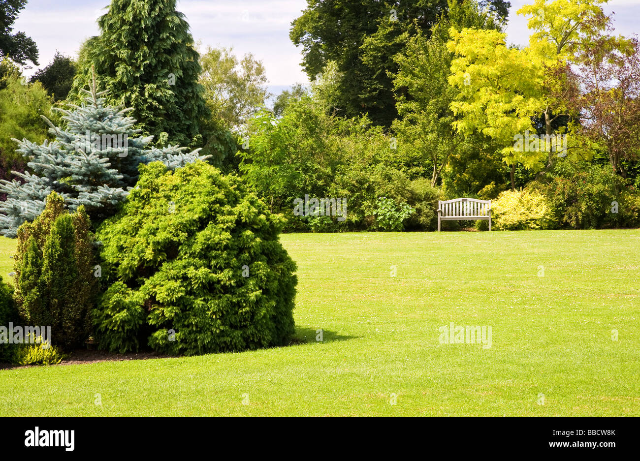 Large trees shrubs and bushes around a lawn at Waterperry Garden Oxfordshire England UK Great Britain - Stock Image