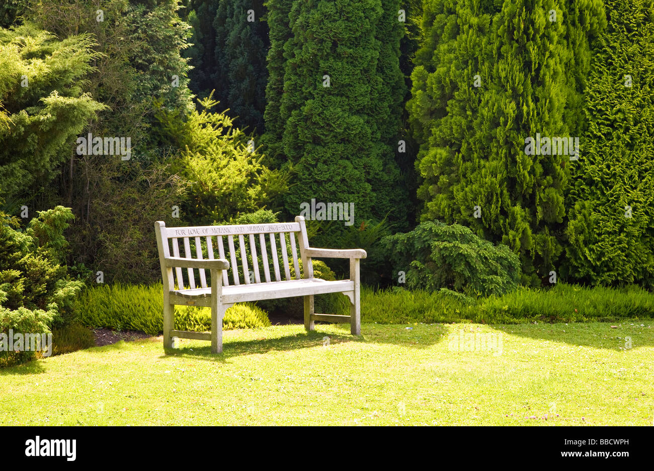 Wooden memorial garden seat or bench with evergreen trees behind at Waterperry Garden Oxfordshire England UK Great - Stock Image