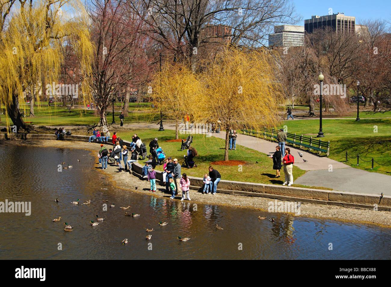 Families with kids feeding ducks in the Lagoon of the Public Garden of Boston, Massachusetts, USA - Stock Image