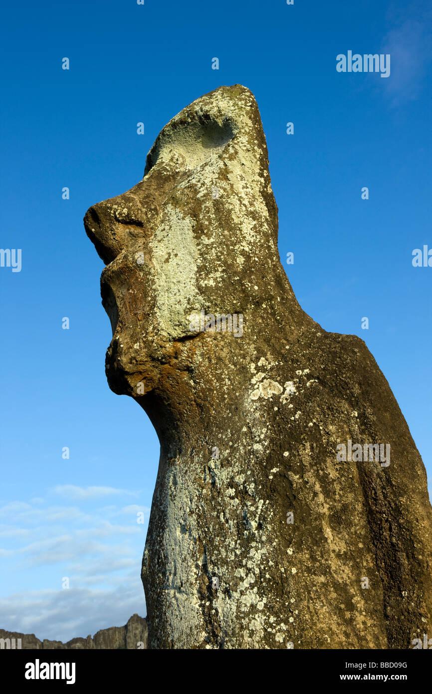 A Moai statue on Easter Island - Stock Image
