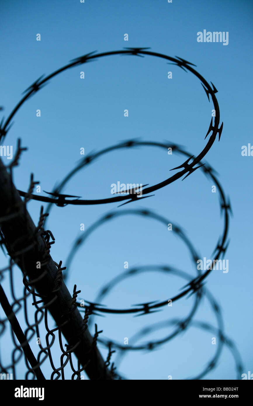 Abstract detail image of curled barbed wire on top of a fence against a blue sky suggesting border security or protection. - Stock Image