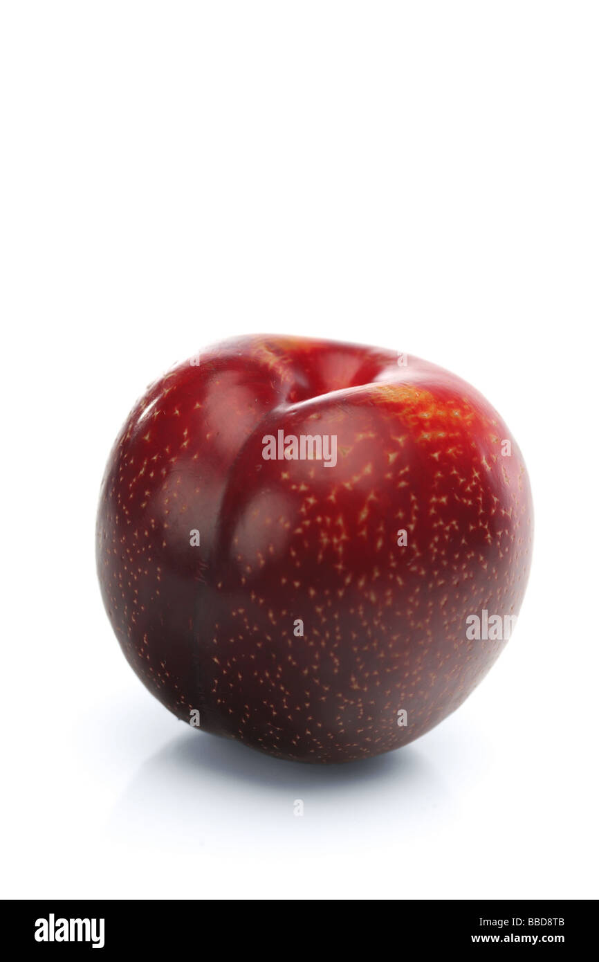 red plum - Stock Image