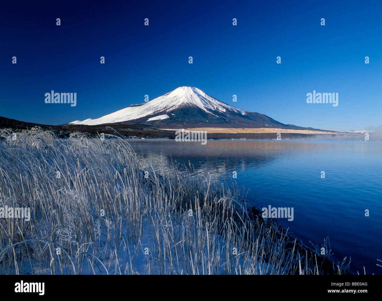 Mt.Fuji And Lake - Stock Image
